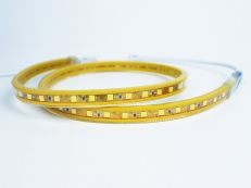 قوانغدونغ بقيادة المصنع,الصمام حبل الضوء,110 - 240V AC SMD 3014 Led strip light 2, yellow-fpc, KARNAR INTERNATIONAL GROUP LTD