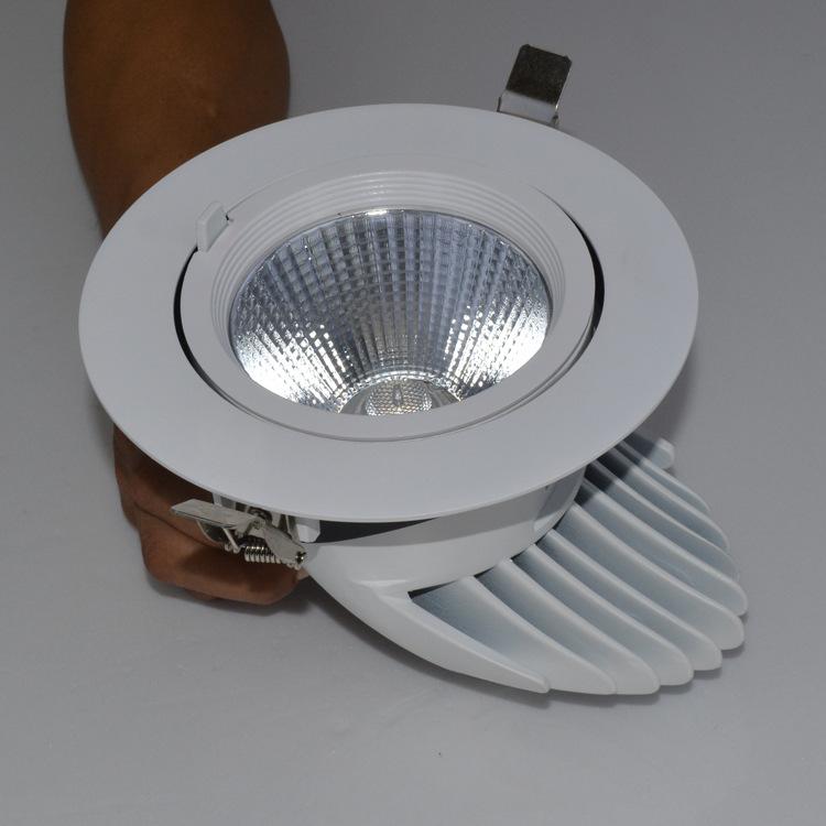 ጓንግዶንግ መሪ የሚንቀሳቀስ ፋብሪካ,LED ወደታች ብርሃን,የ 25 ዋ ዝሆን ናሙና ተዳረገ 3, e_2, ካራንተር ዓለም አቀፍ ኃ.የተ.የግ.ማ.