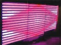 قوانغدونغ بقيادة المصنع,انبوب رصاص,12V DC LED نيون أنبوب 2, 3-14, KARNAR INTERNATIONAL GROUP LTD